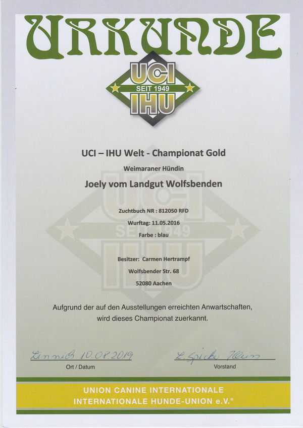 Joely2019 Chamionat gold