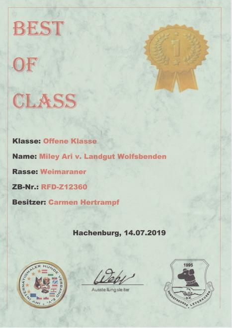 Miley 2019 Hachenburg Best of Class_16
