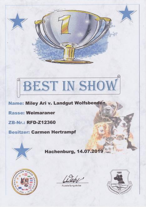 Miley 2019 Hachenburg Best of Show_17