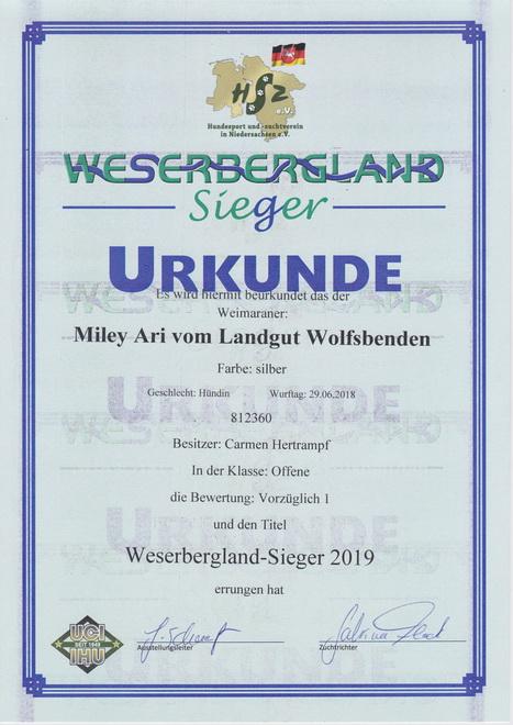 Miley 2019 Weserbergerland- Sieger_22